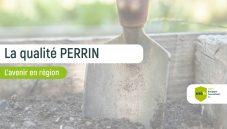 Miniature Perrin